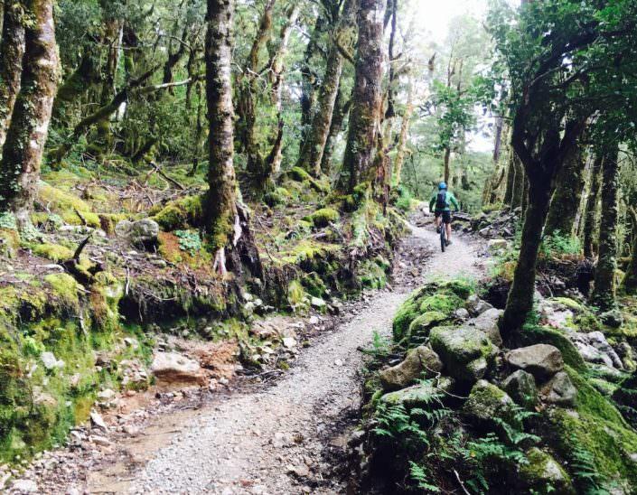 West Coast Riding New Zealand